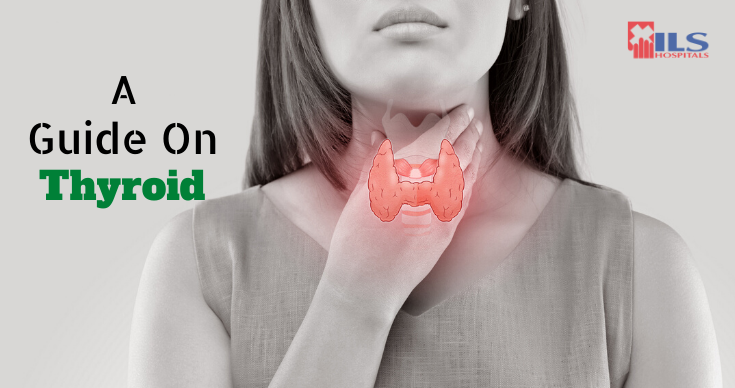 A Guide On Thyroid